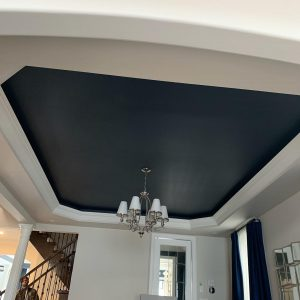 house cilling painting Toronto